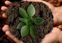 Benessere equo e sostenibile